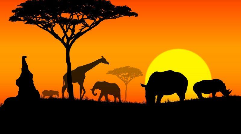 აფრიკის გეოგრაფიული სტატისტიკა